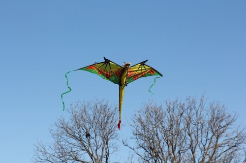 4_kitefest_our_sky_dragon